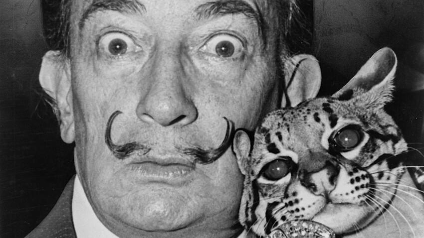 Le félin Babou, animal de compagnie de Dalí