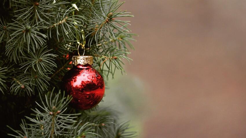 Bordeaux : pas de sapin de Noël sur la place de la mairie cette année