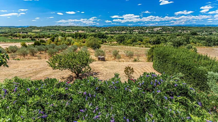 Jean Giono, le goût de la Provence