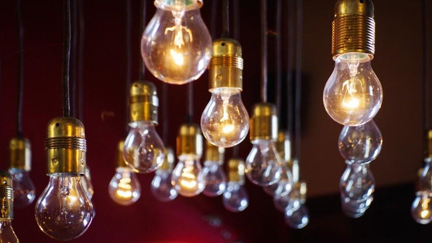 Fluocompacte (LFC) ou LED : comment choisir mes ampoules ?