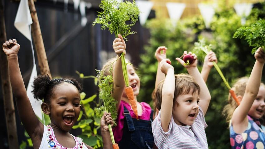 Des colonies de vacances pour initier les enfants à la cuisine