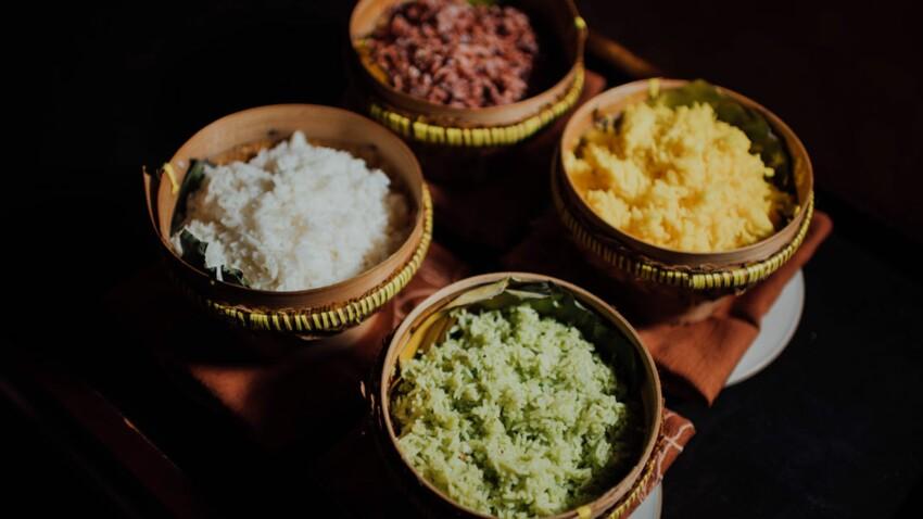 Tout savoir sur le riz