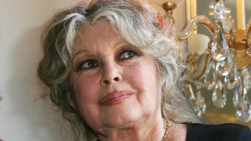 Affaire Elisa Pilarski : comment Brigitte Bardot veut sauver le chien Curtis