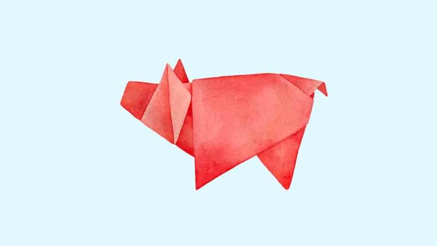 Cochon : horoscope chinois de la semaine du 30 novembre au 4 décembre 2020