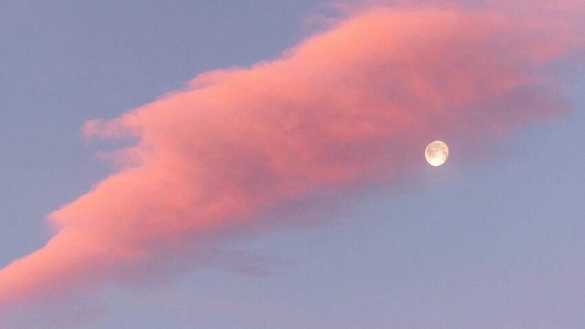 Eau, Terre, Feu, Air : quelle est l'influence des éléments sur votre signe lunaire ?
