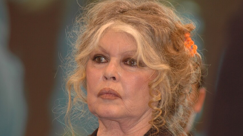 Brigitte Bardot : itinéraire d'une insoumise