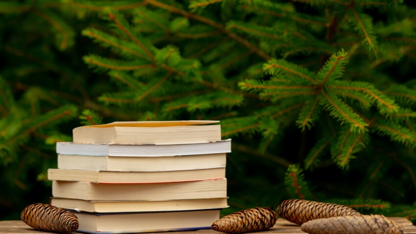 Noël 2020 : 5 romans formidables à glisser au pied du sapin