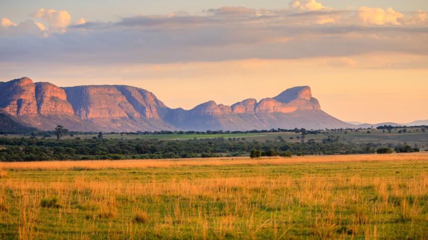 Afrique du Sud :  voyage entre culture et nature