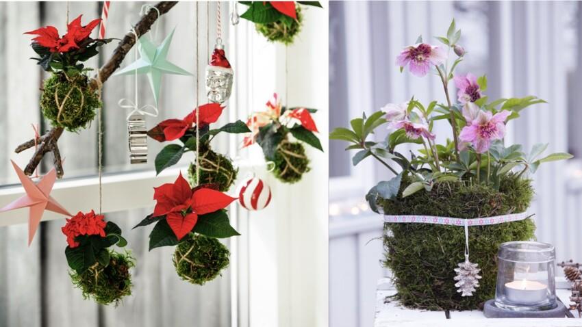 3 idées créatives pour revisiter le kokédama à Noël