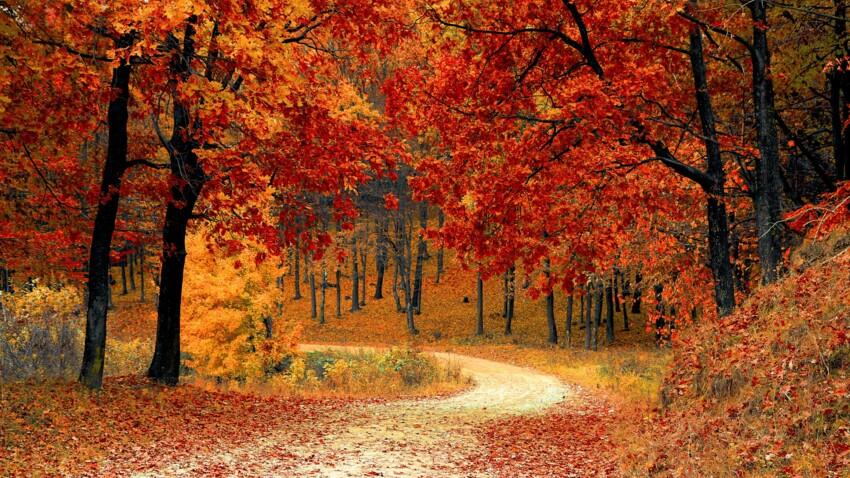 4 activités en extérieur à faire absolument avant la fin de l'automne