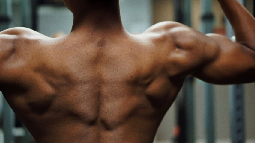 3 exercices faciles pour muscler ses épaules à la maison