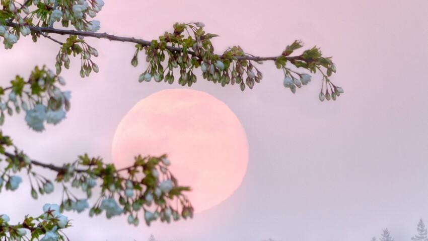 Horoscope lunaire de la semaine du 13 au 19 février 2021