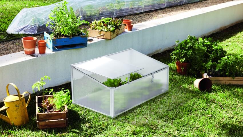 Lidl lance une vente spéciale équipement de jardin le 4 mars 2021