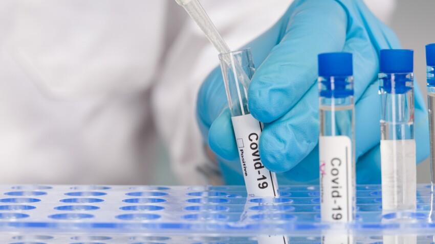 Variant sud-africain : il pourrait immuniser contre les autres variants du coronavirus