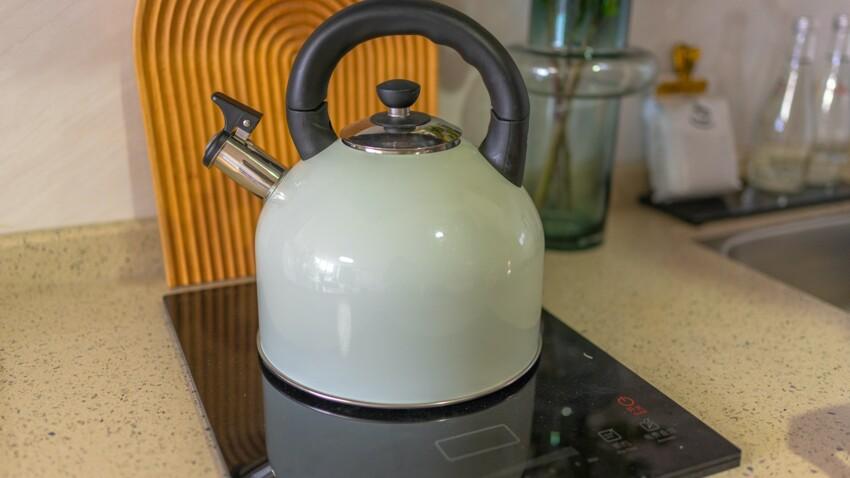 Comment détartrer sa bouilloire avec des produits naturels ?