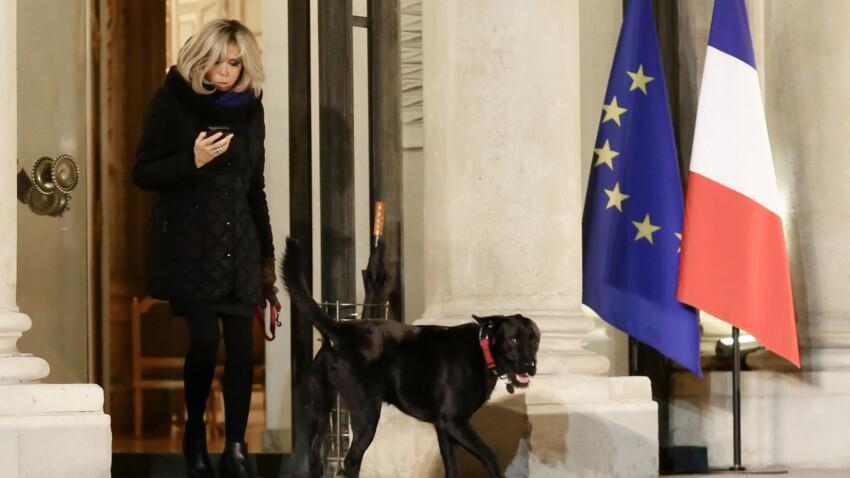 Brigitte Macron en promenade avec son chien : itinéraire d'un Nemo gâté