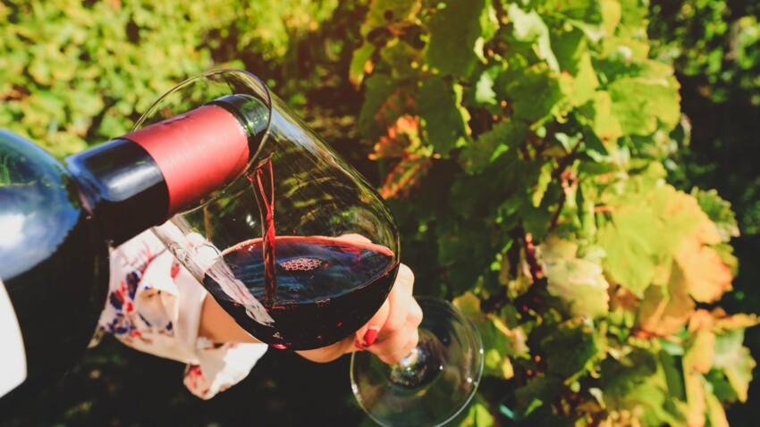 10 000$ par mois pour boire du vin : l'offre d'emploi de rêve en Californie !