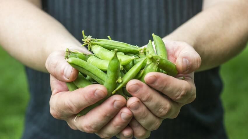 Alimentation : voici comment calculer les portions idéales grâce à ses mains