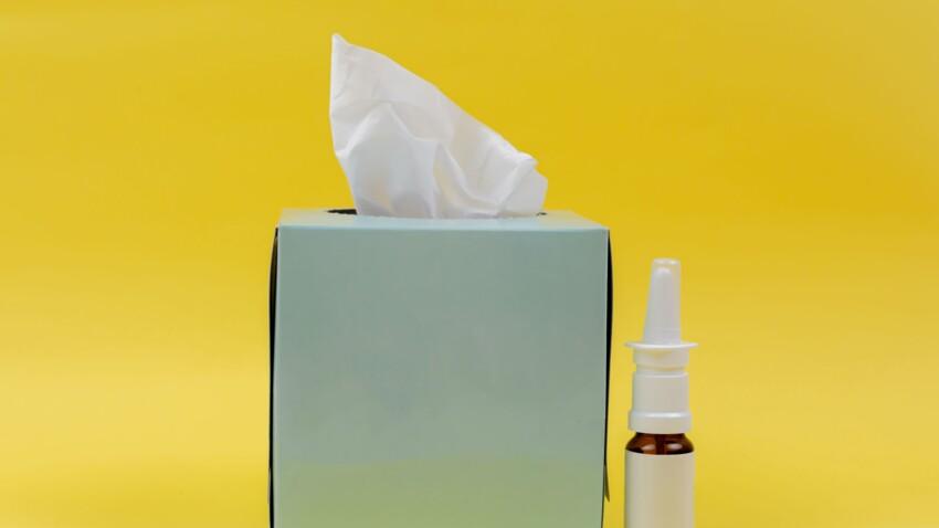 Allergie au pollen : 15 conseils d'allergologue pour éviter le rhume des foins