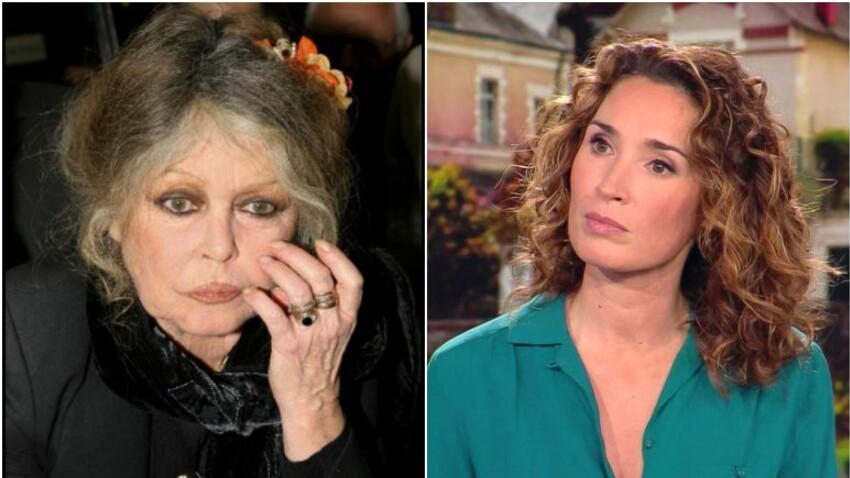"""Brigitte Bardot : """"Marie-Sophie Lacarrau m'a fait frémir d'horreur"""""""