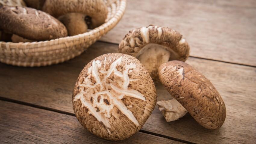 Shiitake : cette erreur dans la préparation de ces champignons peut entraîner une intoxication