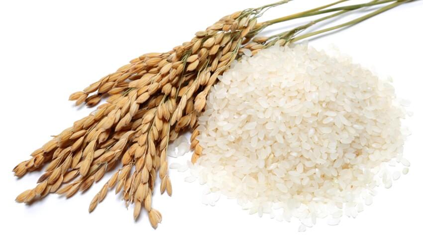 5 variétés de riz à (re)découvrir