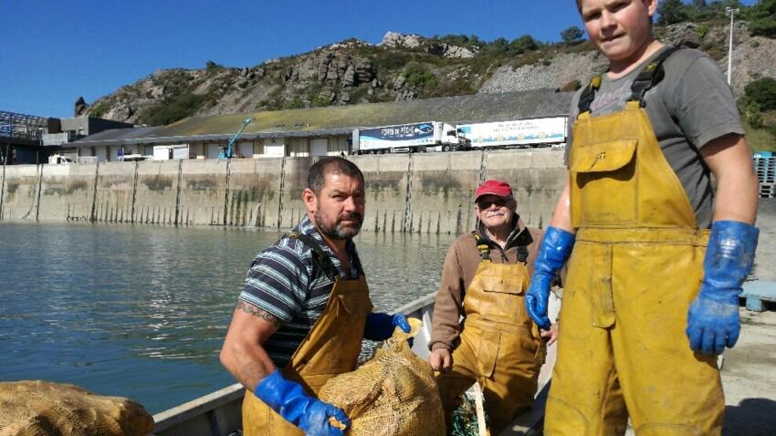 Tout savoir sur le métier de pêcheur de Saint-Jacques