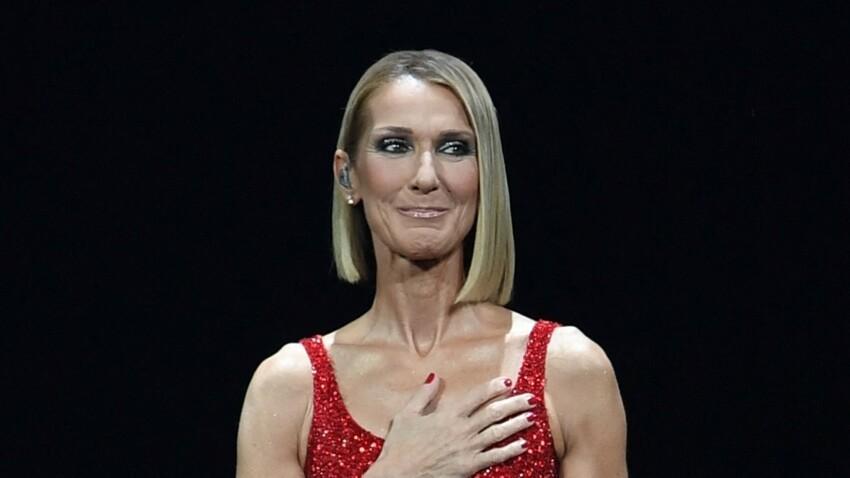 """Céline Dion en deuil : """"attristée"""", la chanteuse rend hommage à son ami"""