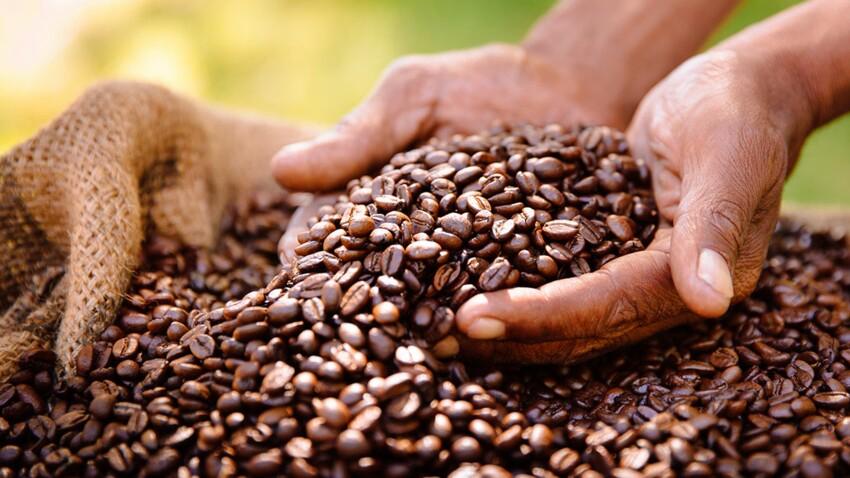5 bonnes raisons de choisir un café engagé