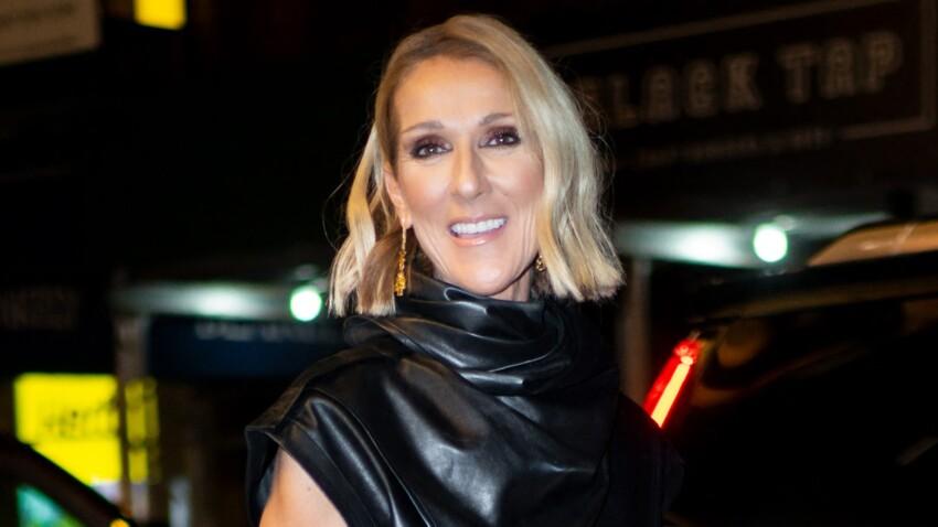 Céline Dion envoûtante : décolleté jusqu'au nombril et cuisse dévoilée (wow !)