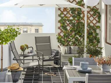 Nos plus belles inspirations pour une déco murale avec des plantes