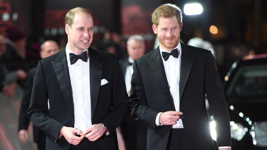 Les princes William et Harry enterrent la hache de guerre pour une cause qui leur tient à cœur