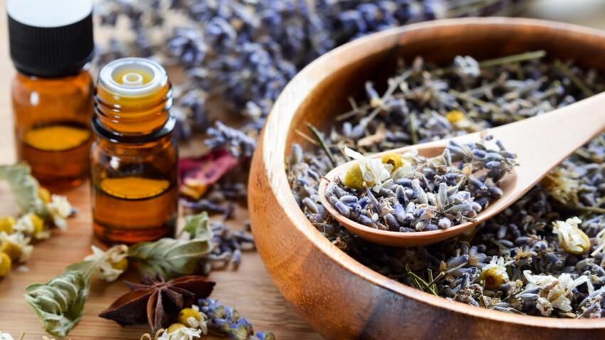 Anxiété : les meilleures huiles essentielles anti-stress