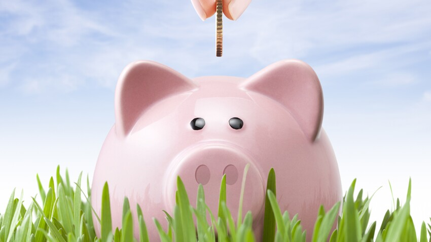 Placement durable, responsable, solidaire : comment choisir une épargne vertueuse ?