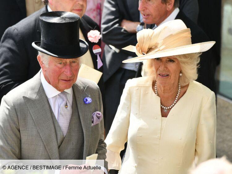 Le prince Charles et Camilla dans la tourmente : leur supposé fils illégitime dévoile de nouvelles preuves