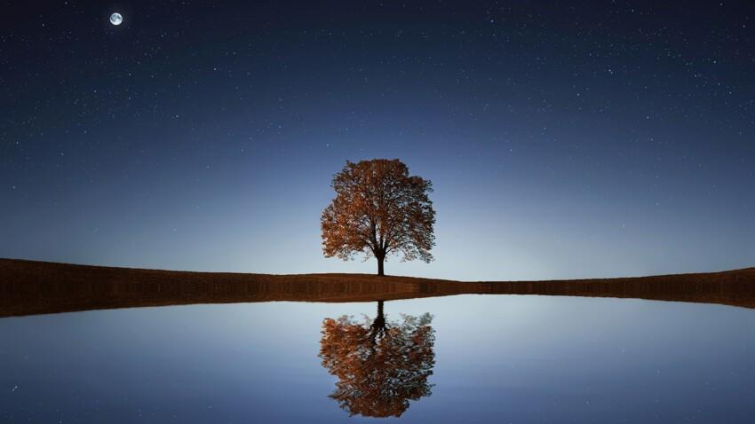 Astrologie karmique : tout savoir sur les noeuds lunaires