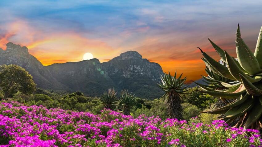 Merveilles du monde : 5 jardins botaniques extraordinaires