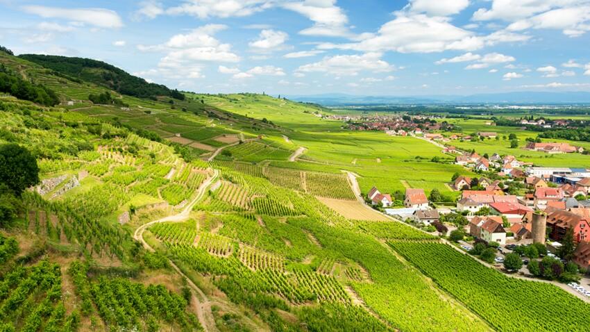 Vin blanc, rouge ou rosé : nos 8 cubis préférés pour l'été