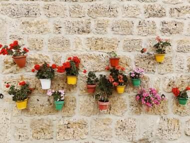 Nos idées déco pour votre mur extérieur et votre jardin