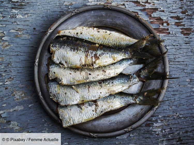 5 idées recettes avec des sardines
