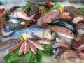 Nos conseils pour savoir acheter son poisson