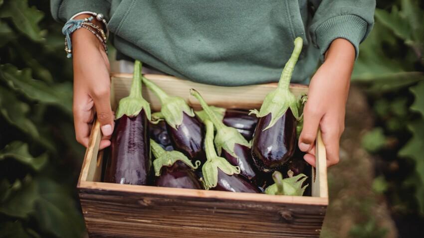 Nos super astuces pour éplucher et préparer une aubergine