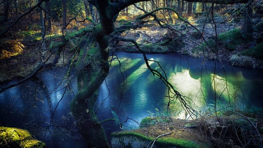 5 expériences insolites et estivales au Pays de Fontainebleau