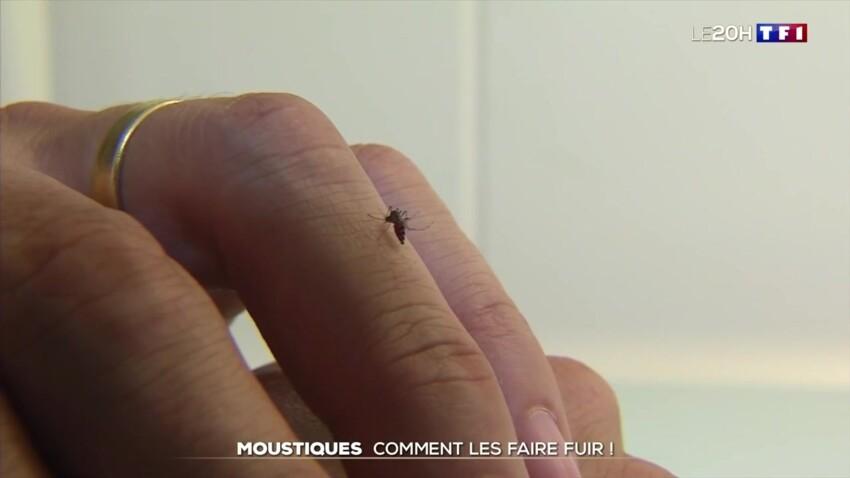 Femmes enceintes, personnes en surpoids, sportifs… Ces catégories de personnes qui attirent le plus les moustiques