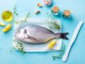 Disparition des espèces, biodiversité en danger...comment choisir son poisson ?