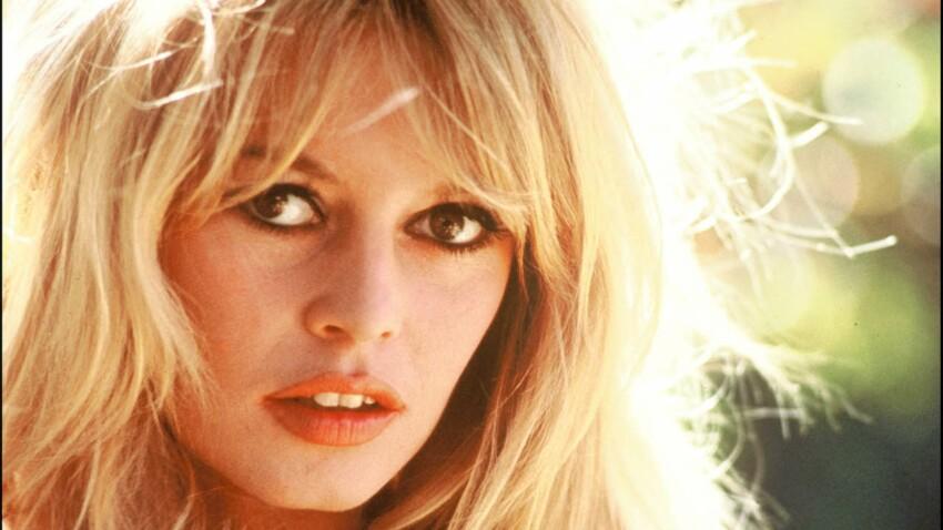 Brigitte Bardot : ce jour où elle a été agressée avec une fourchette par une infirmière
