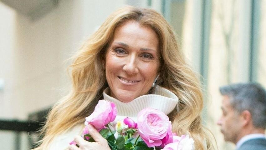 Céline Dion irrésistible en robe glamour et décolleté jusqu'au nombril