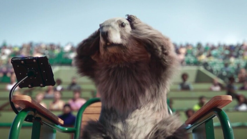 France 3 : pourquoi les marmottes font leurs adieux aux téléspectateurs ?