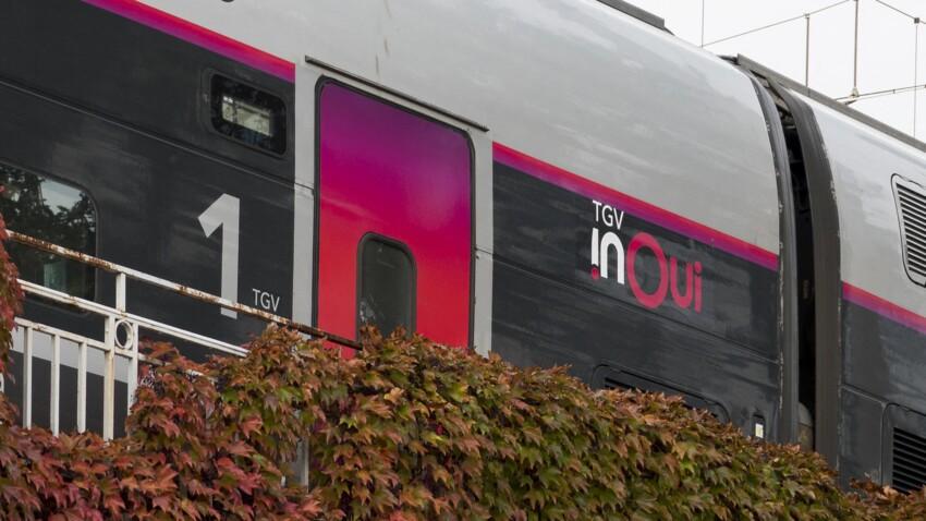 SNCF : que deviennent les objets oubliés dans le train ?