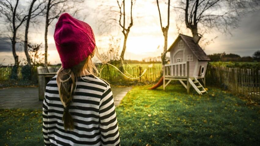 Arbres du jardin : les règles à connaître pour éviter les conflits de voisinage